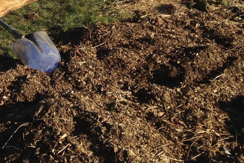 Осенью почву рекомендуется удобрить перегноем