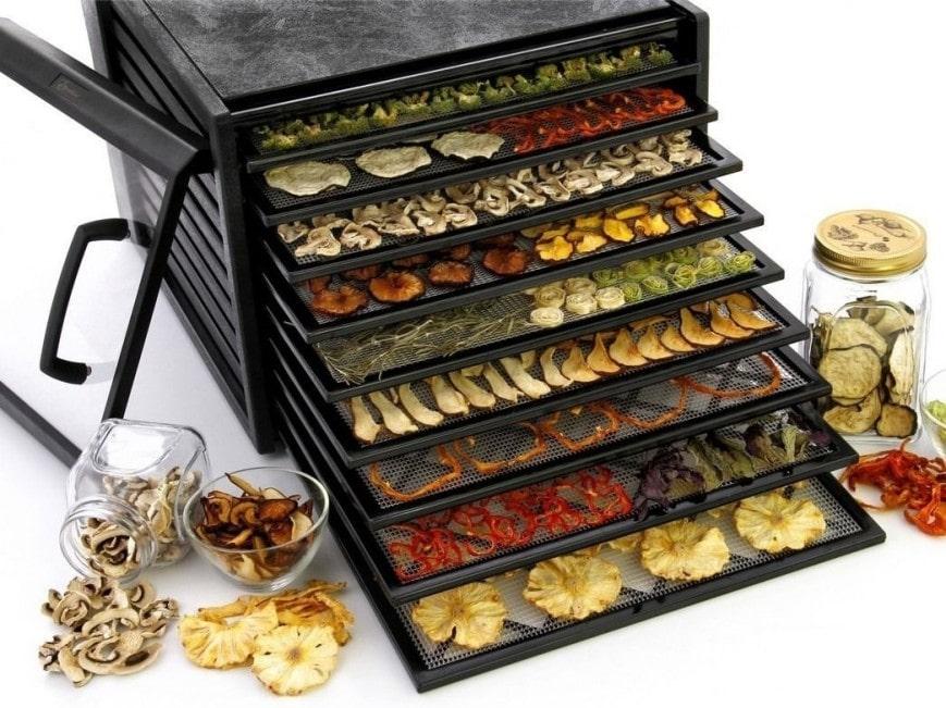 дегидратор для сушки овощей и фруктов