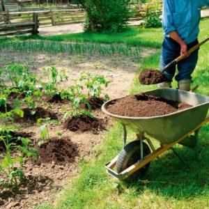 Удобрения для подкормки растений